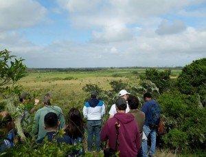 Conservação do Pontal da Barra
