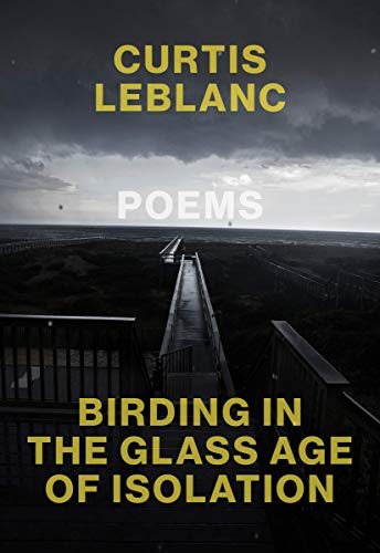Birding in the glass-age of isolation book cover