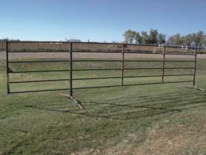 6-bar 20 ft freestanding livestock panel