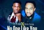 C.Prince No One Like You