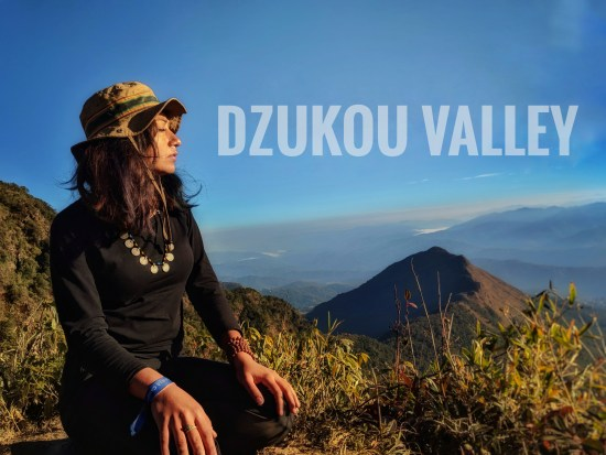 Do It Yourself: Dzukou Valley Trek
