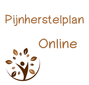 Het Pijnherstelplan – Online