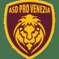 Logo Pro Venezia