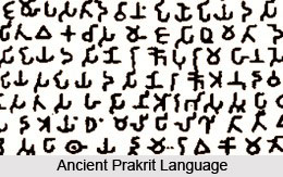 origin_of_prakrit_language_1