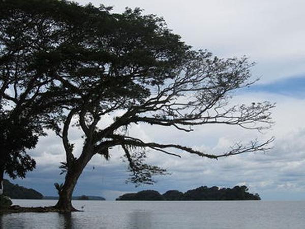 Nicaraguasee-web