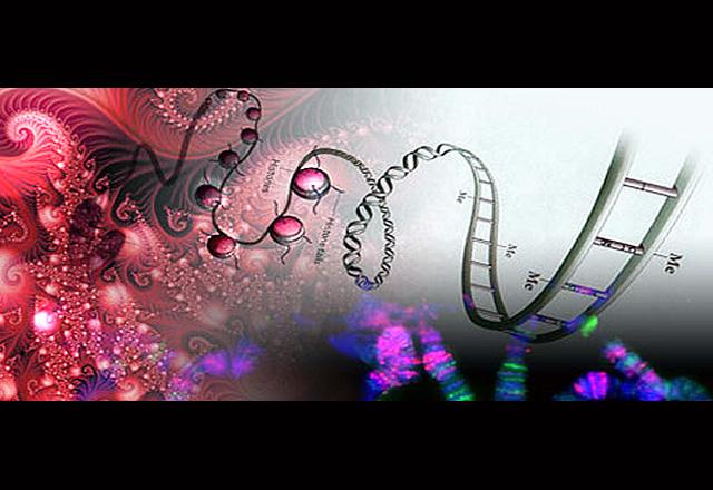 titelbild-quantenheilung
