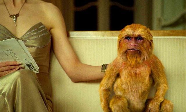 Кадр из фильма «Золотой компас». Миссис Коултер и ее «даймон»