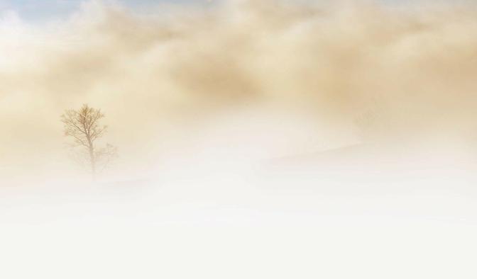 fog tree 300x176 - Die 7 Grundsätze der Achtsamkeit - #3 Anfängergeist