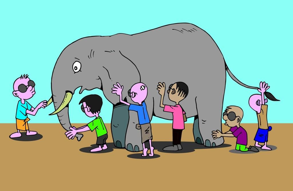 Alexithymie Blinde Elefant