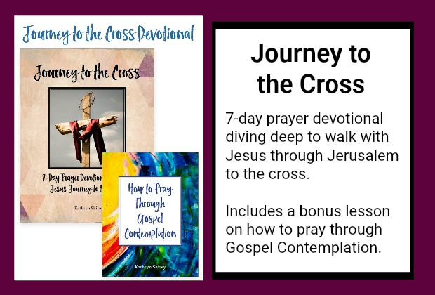 Journey to the Cross | 7 day devotional through Jesus' final week | bonus lesson on how to pray Gospel contemplation
