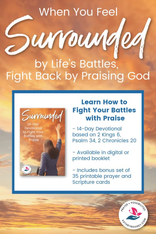 Do you feel surrounded by your problems? This 14-day devotional will help you see God by your side and learn to fight back by praising God. Explore how prayer and praise will sustain you through the battles of life. Available in digital or print, with bonus printable prayer and scripture cards.