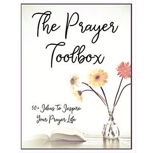 The Prayer Toolbox - An essential prayer reference guide detailing various prayer methods, with over 50 prayer ideas to inspire and renew your prayer life.