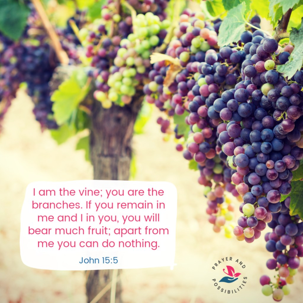"""I am the vine; you are the branches. If you remain in me and I in you, you will bear much fruit; apart from me you can do nothing. If you do not remain in me, you are like a branch that is thrown away and withers; such branches are picked up, thrown into the fire and burned. If you remain in me and my words remain in you, ask whatever you wish, and it will be done for you. This is to my Father's glory, that you bear much fruit, showing yourselves to be my disciples. John 15:5-8"