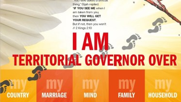 TERRITORIAL GOVERNOR