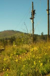 Lutheran Valley Retreat, Colorado