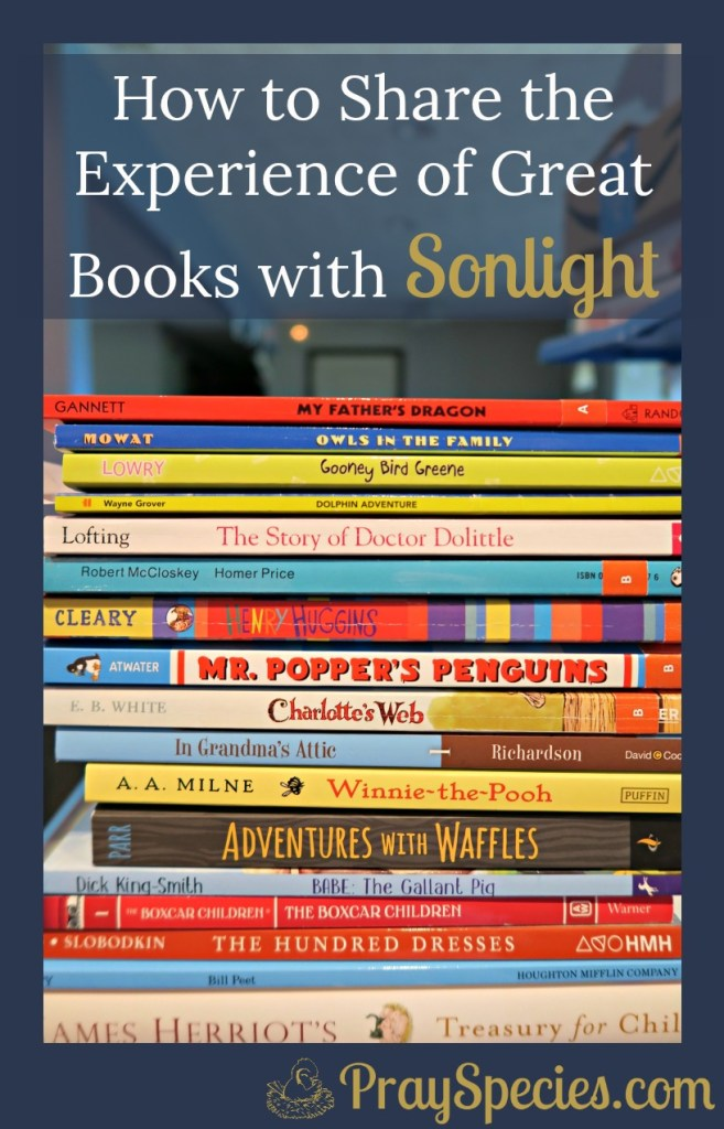 Sonlight makes homeschool easy by providing wonderful books that the whole family loves. Here are a few ideas for how to share the experience of those great books!