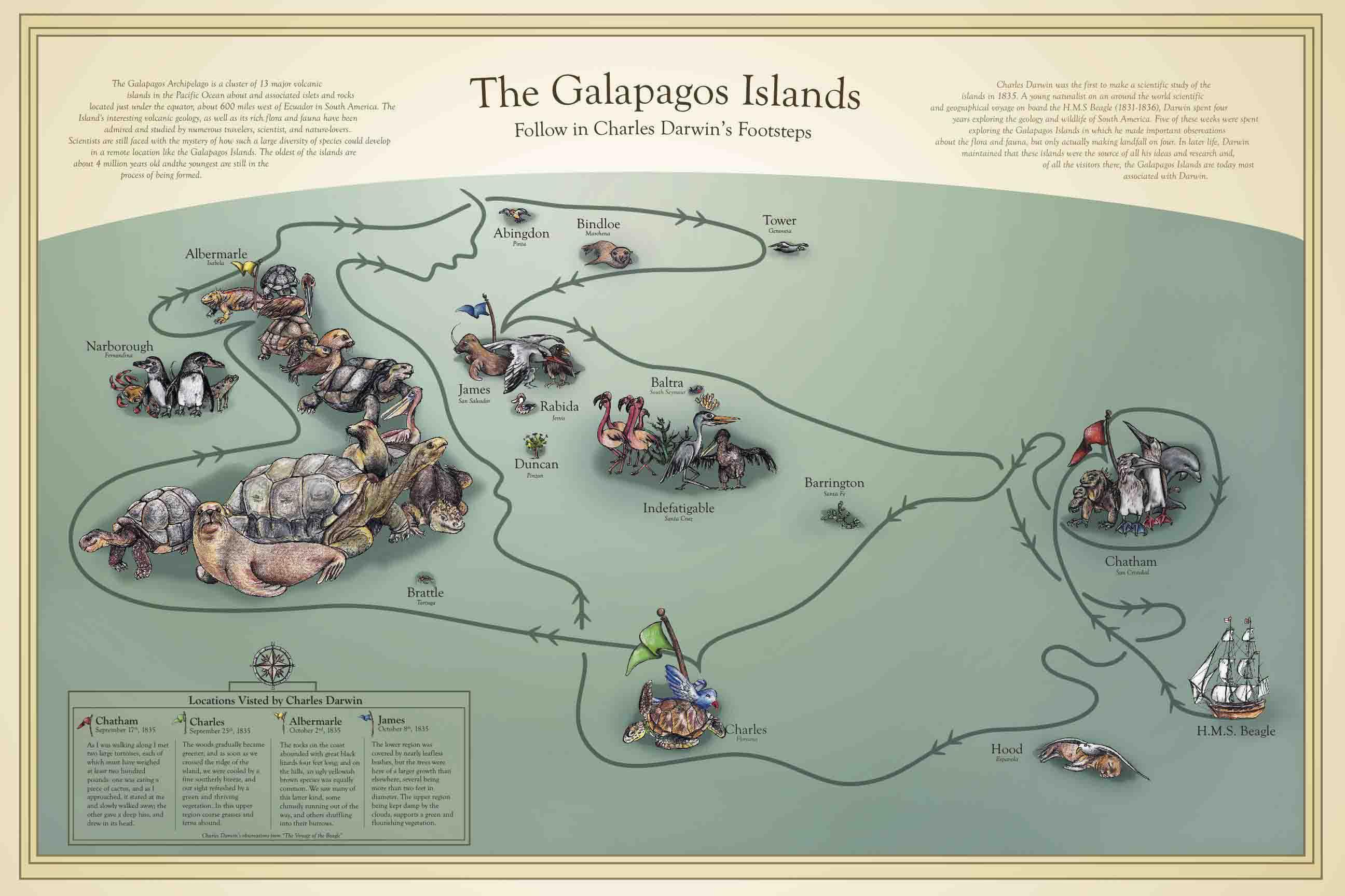 Galapagos Islands Darwin Inspiration