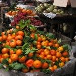 Sermon: Becoming Fruitful Through Affliction