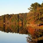 Devotional : 3 Ways to Honor God Daily (Psalm 145:1-6)
