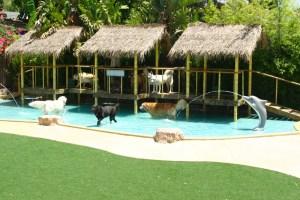 Luxurious dog hotel