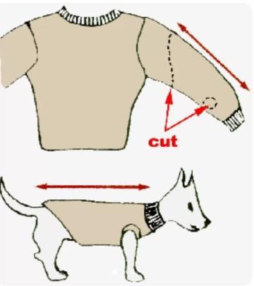 homemade dog sweater