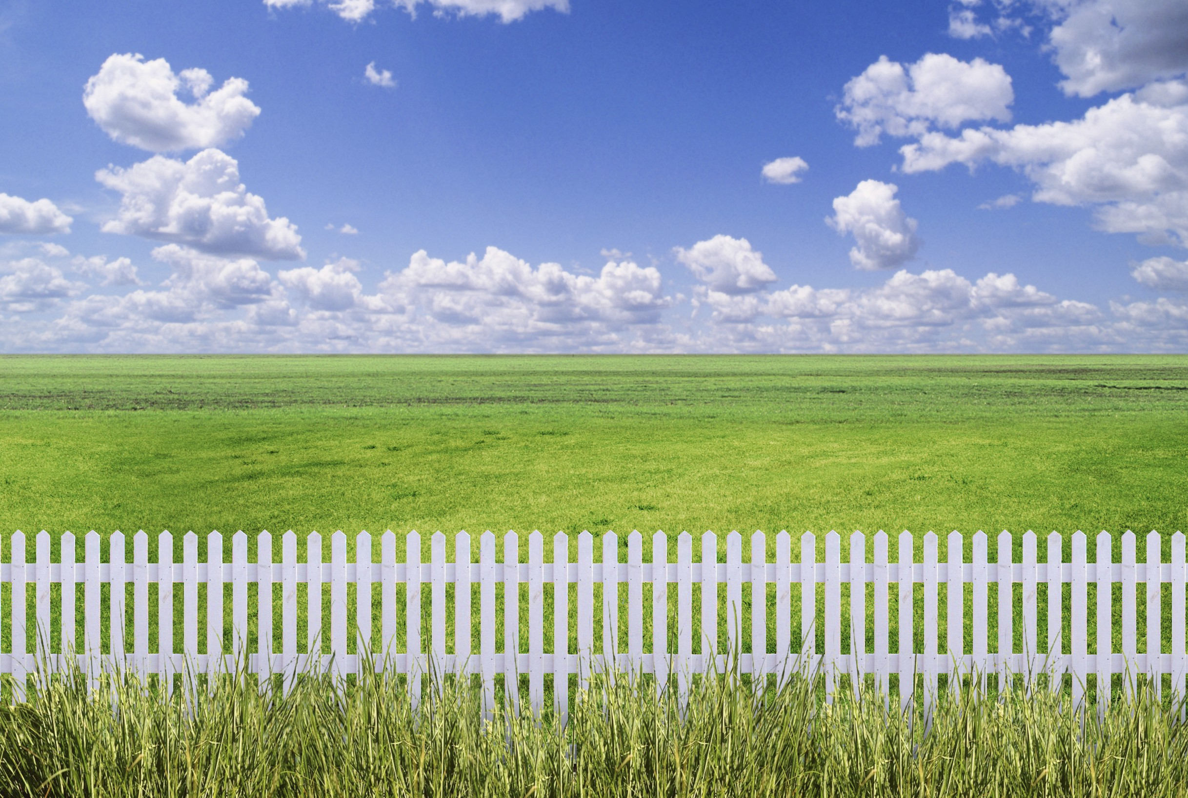 White picket fence, green grass, and blue skies.
