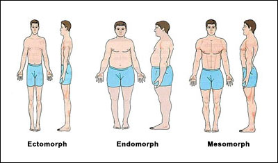 somatotype body types Body type eating: Find out whether its right for you.