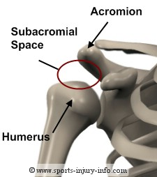 subacromial-space