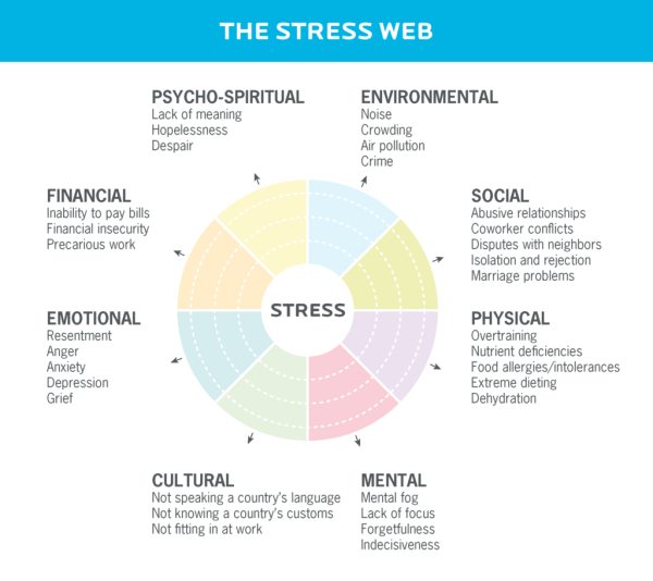 """A graphic called """"the stress web"""" shows 8 stress dimensions: phycho-spiritual, environmental, social, physical, mental, emotional, and financial."""