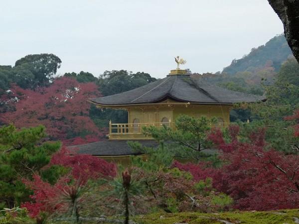 Kyoto - Japão - Blog Preciso Viajar