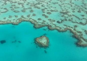Voo panorâmico Whitehaven Beach e Barreira de Corais