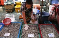 fish-seller sorts shrimp at Klong Toey market in Bangkok. Activists claim that government measures have failed to end labour abuses in Thailand's seafood industry. Photograph: Barbara Walton/EPA