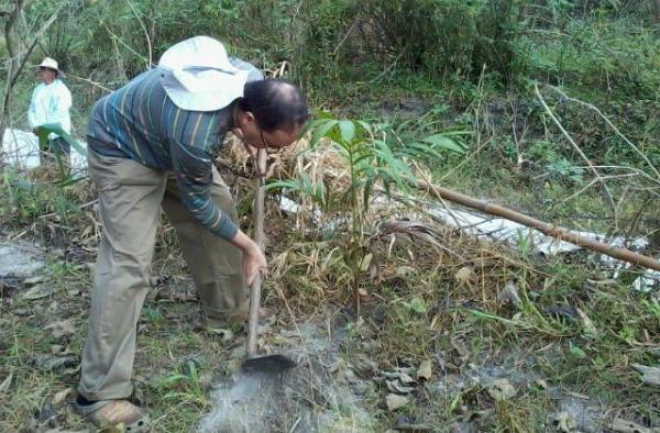 LEADING THE WAY. Then San Fernando Auxiliary Bishop Pablo Virgilio David joins a tree-planting activity, as seen in this photo posted by his flock in Pampanga in October 2015. File photo from Sagip Sapang Balen's Facebook page