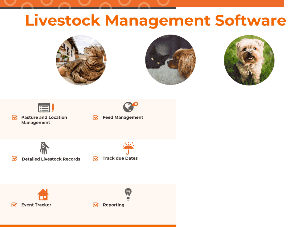 Top 8 Livestock Management Software In