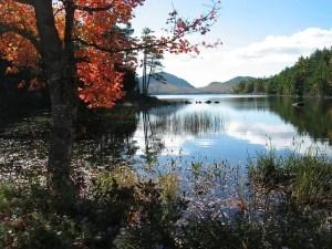Lake, trees and sky.