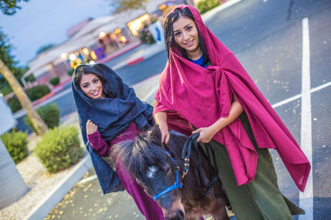 horse rides in surprise az