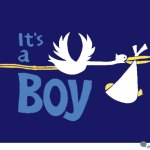 Its a boy announcement with stork carrying baby boy - darker blue background - pic with cool graphic design.