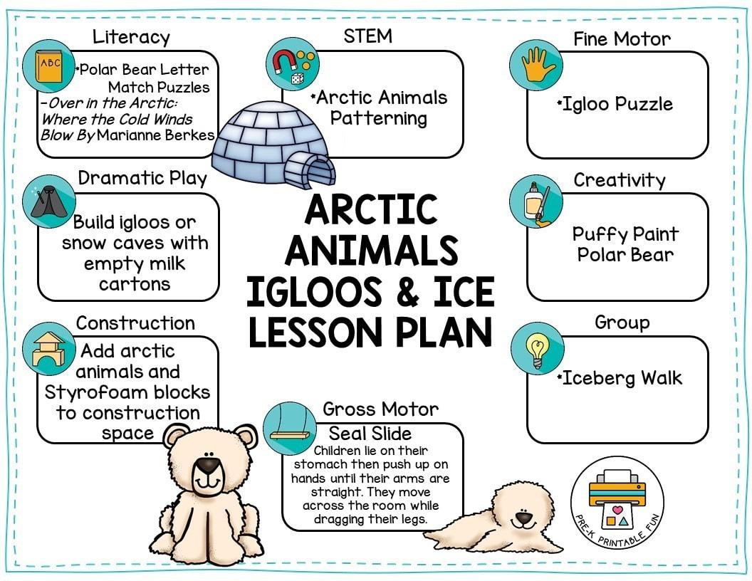 Arctic Animals Preschool Activities