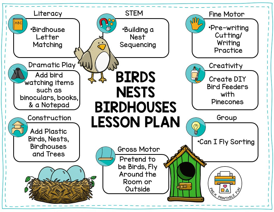 Birds Nests And Birdhouses Lesson Planning Ideas