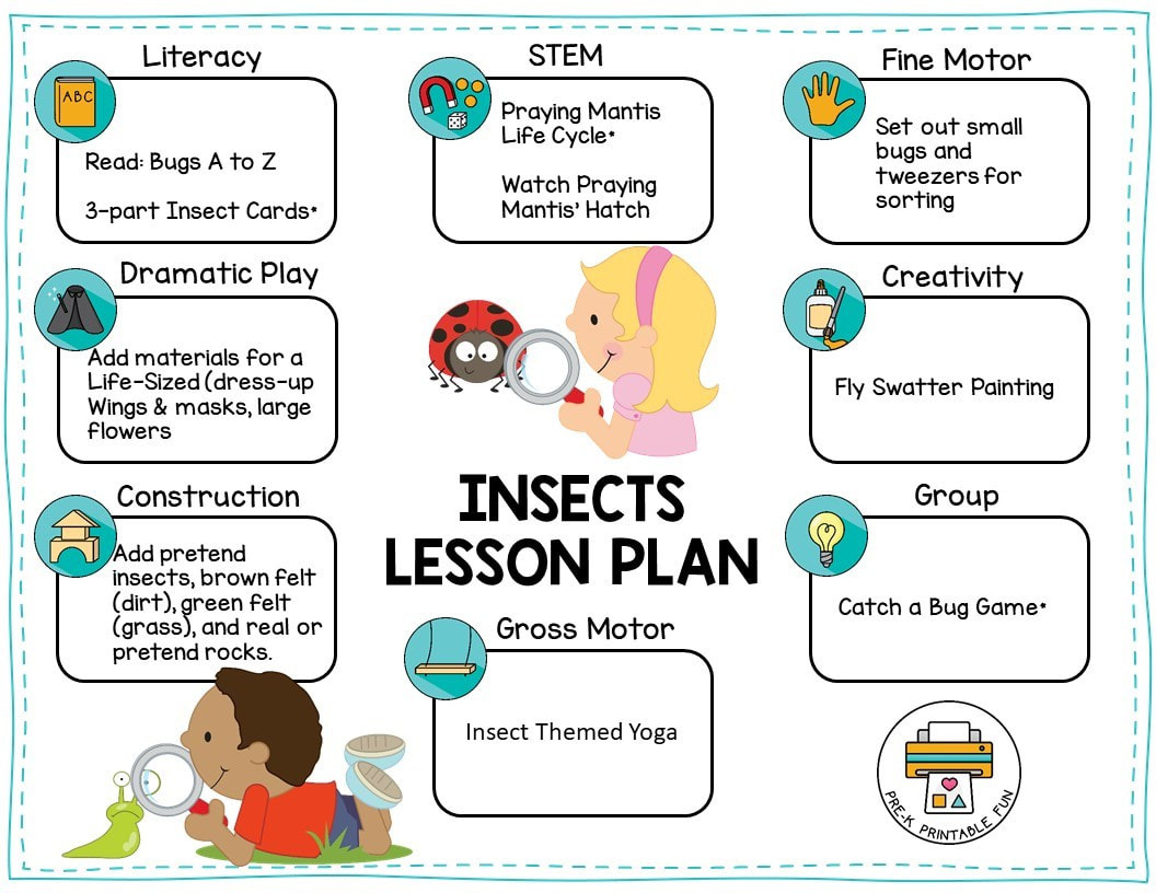 Insects Lesson Planning