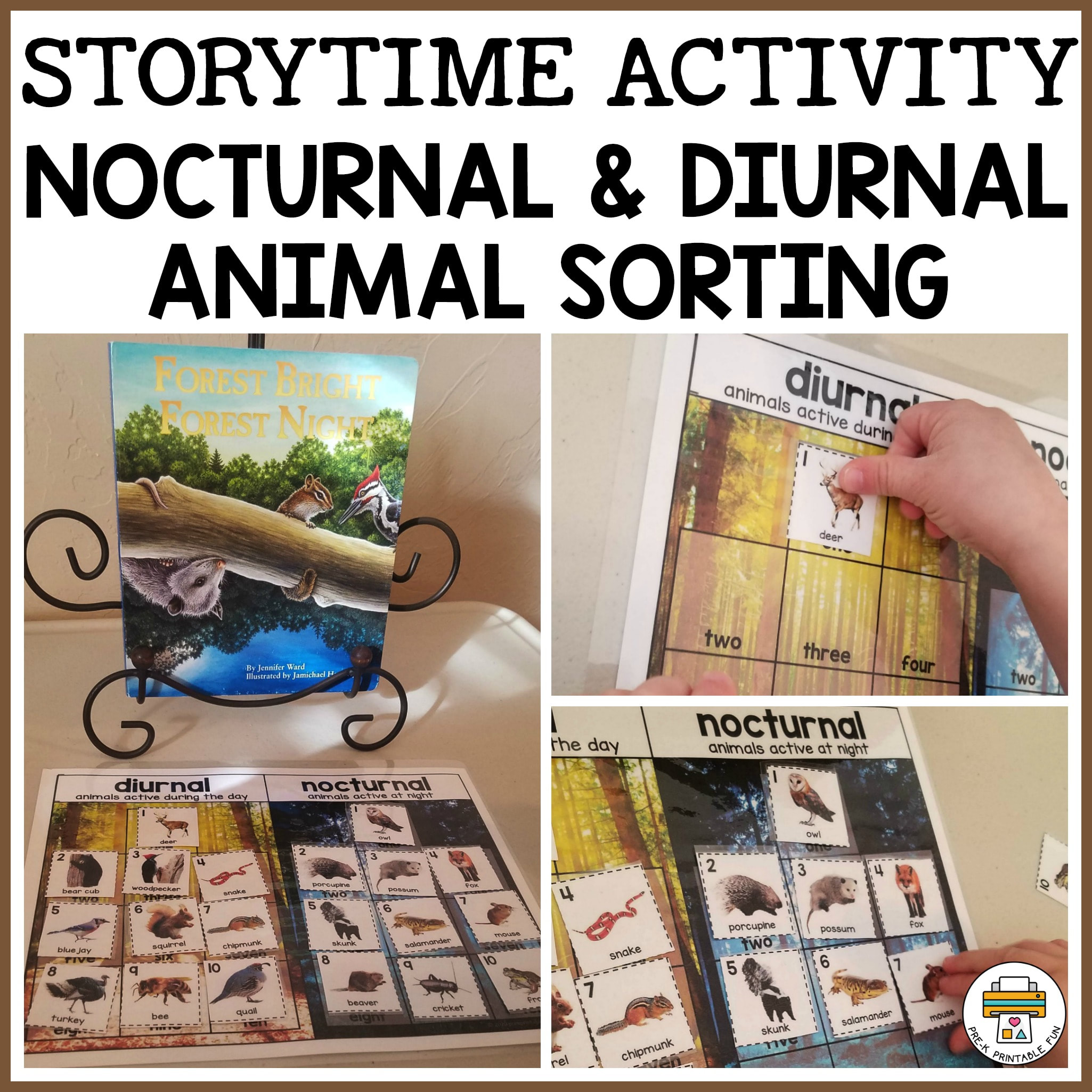 Storytime Activity Diurnal And Nocturnal Animal Sorting