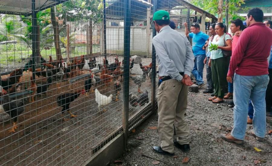 Cáritas Moyobamba realiza pasantía con beneficiarios de proyecto