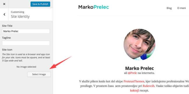 Ikona spletne strani v WordPressu