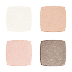 Absolute Minerals Devita Skin Care absolute EYES Quad Metro Neutrals D00981