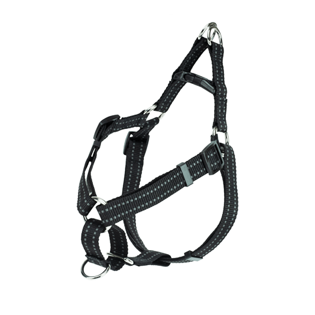 Step In Harness
