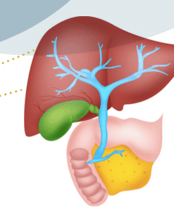 8 Signs and Symptoms of Gallbladder Problems