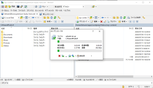 wordpress-winscp-download-progress