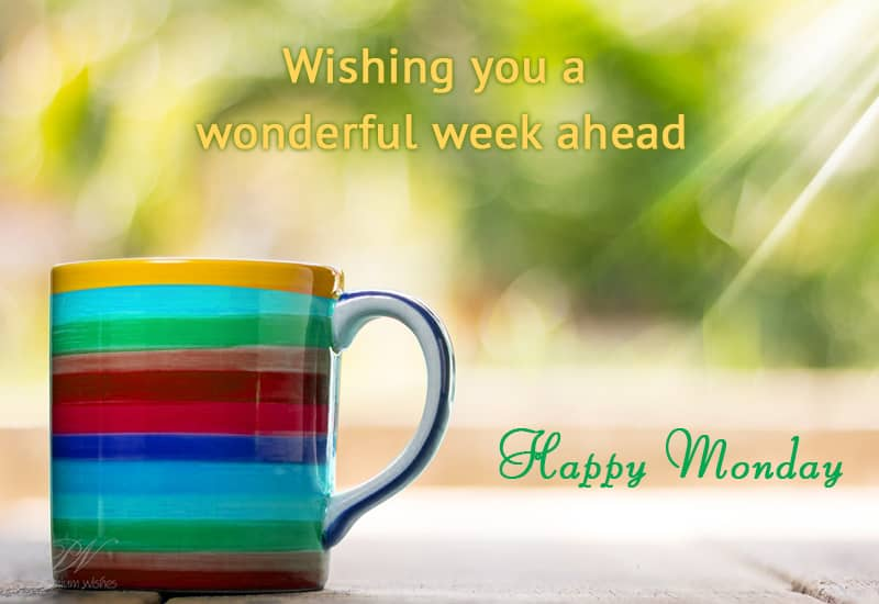 Wishing You A Wonderful Week Ahead On This Monday Monday