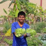 Taller de producción de hortalizas del MIMP, a cargo de residentes con discapacidad, da su primera cosecha