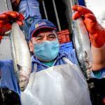 Sanipes emite medidas preventivas en infraestructuras pesqueras y acuícolas para hacer frente al COVID-19